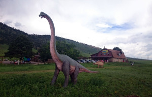 A giant brontosaurus welcomes visitors to the Dinosaur Ridge Visitors Center.